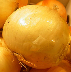 Glutathione-onion